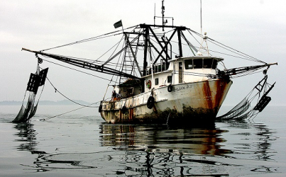 Indonesia Lobbying for Better Access to EU's Seafood   Market