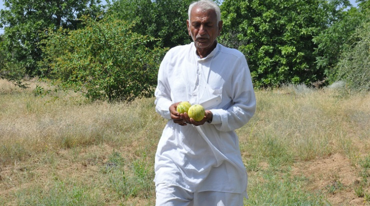 Choga Lal with his fruits (Photo: Jasvinder Sehgal)
