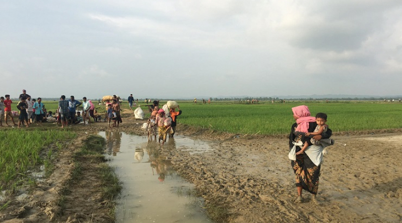 Rohingya refugees flee from their homes in Rakhine state, Myanmar to Bangladesh (Photo: Shakil Ahmed